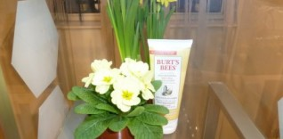Introducing the New Burt's Bees Body Lotion Collection – 24 Hour Moisturisation