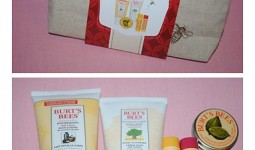 burts-bees-christmas-collections-20131