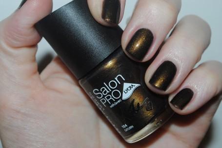 rimmel-salon-pro-kate-autumn-2014-swatch-saturn