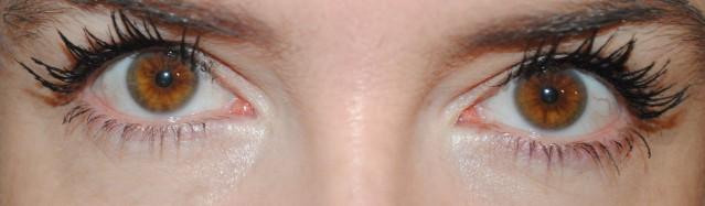 fairydrops-quattro-mascara-review-after-2-coats