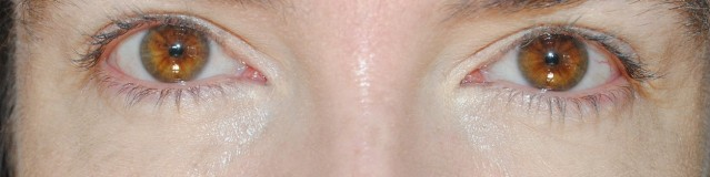 aerin-eyelight-concealer-swatches-light
