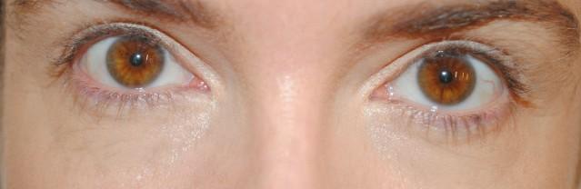 aerin-eyelight-concealer-swatches-medium