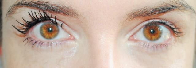 dior-diorshow-mascara-2015-review-1-coat