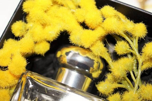 jo-malone-mimosa-&-cardamom-cologne-review-3