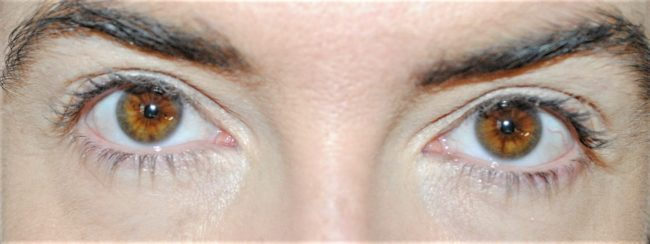 Elizabeth Arden Lasting Impression Mascara Review