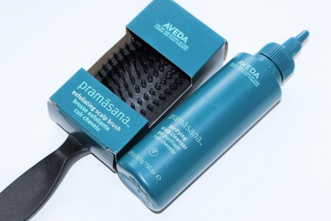 Aveda Pramasana Exfoliating Scalp Brush & Purifying Scalp Cleanser Review