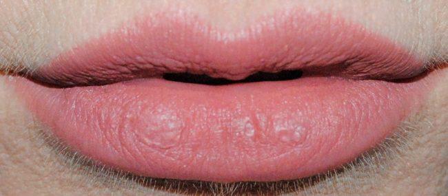 Buxom Plumpline Lip Liner Swatch - Hush Hush