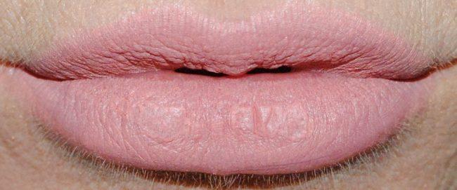 Buxom Plumpline Lip Liner Swatch - Ransom